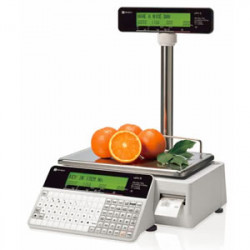 UNI-3L1 pole retail scale